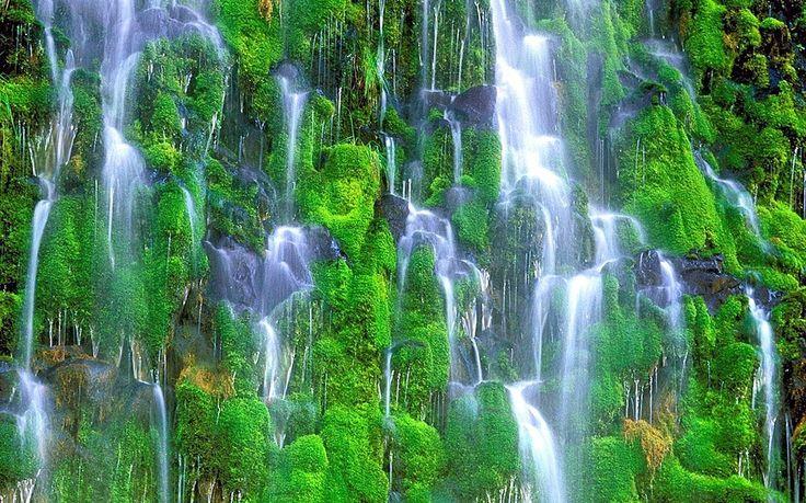A vízesések vélhetően a természet egyik legkedveltebb látványosságai. Vannak közöttük kicsik és nagyok, alacsonyak és magasak, alig csordogálók és vadul zuhogók is. Valamennyi egyedi...
