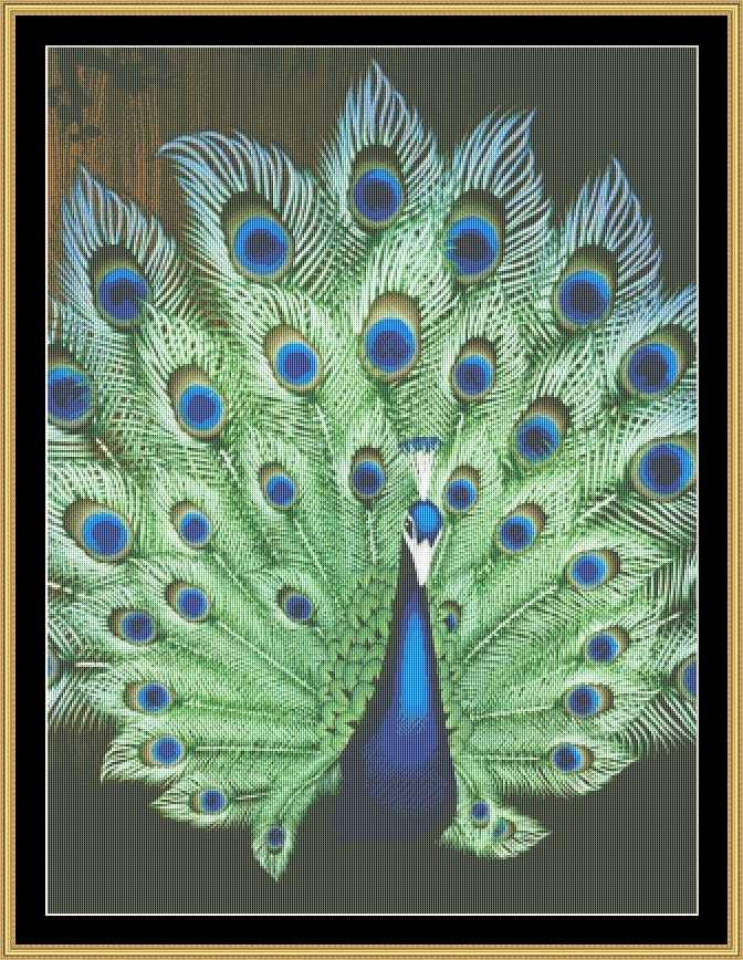 Best peacock and phoenix cross stitch images on