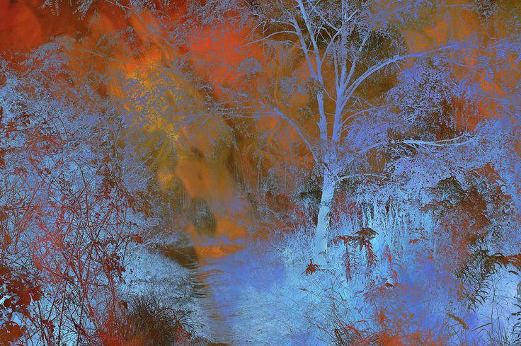 Moonlight Forest by Jenny Rainbow #JennyRainbowFineArtPhotography #Trees #FramedPrints #ArtForHome #HomeDecor #BuyArtOnline #MetalPrint #WallArt #Golden