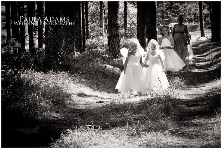 Little fairies in the woods