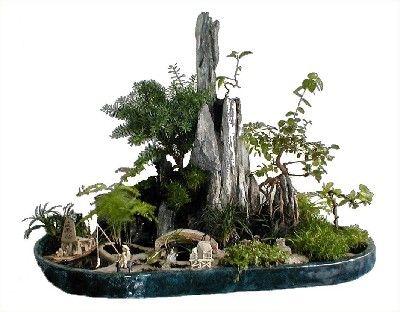 Saikei: Living Landscapes in Miniature ebook rar