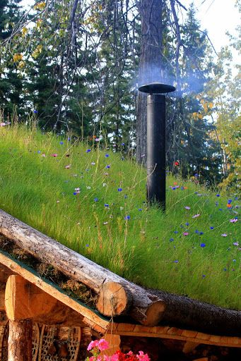 lovely meadowy green roof