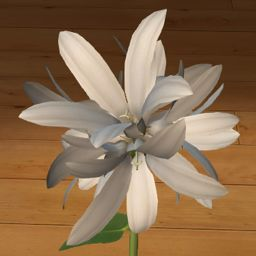 Dzwonek skupiony biały 3D  www.florysta3d.pl