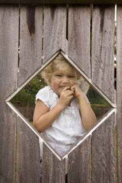 I love this cut out in the fence. I would see if it could be possible to get glass title or window installed. Do this the cut out on each side of the yard.