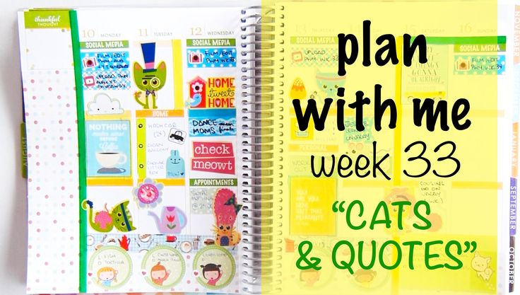 """Plan with me - Week 33 """"Cats & Quotes"""""""