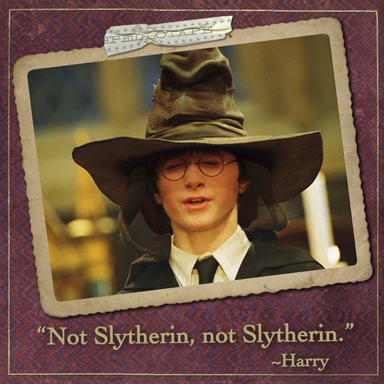 """Not Slytherin, not Slytherin."" #harrypotter #harrypotterquotes #danielradcliffe:"
