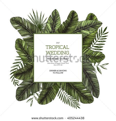 Stock Images similar to ID 9836776 - palm