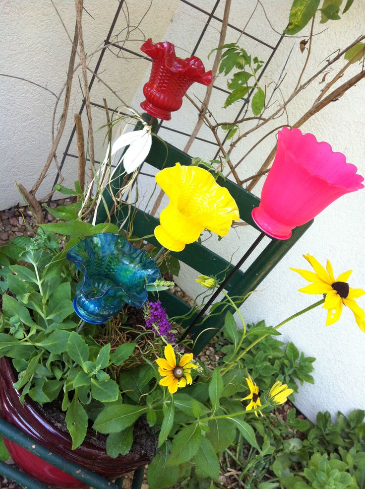 Up-cycle light globes.  Light up your garden!  Fun to find and fun to paint.