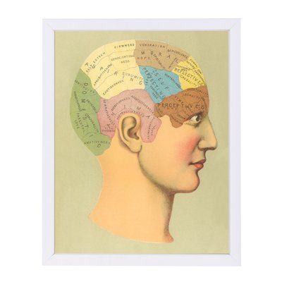 East Urban Home u0027Phrenology Chartu0027 Graphic Art Print Format White - white paper format