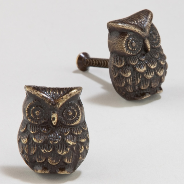 Antique Brass Owl Knob | World Market  I need... A BUNCH!