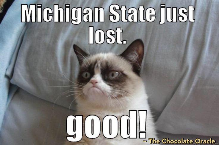 #Michigan #Wolverines #MichiganWolverines #Football #Rivalry #NCAA #CollegeFootball #Sports #TheChocolateOracle #MSU