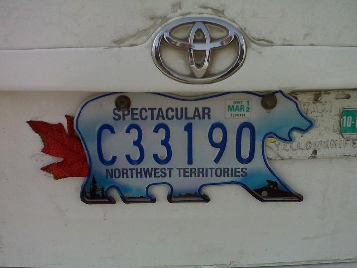 Polar bear licence plate. NWT, Canada.