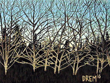 Early Spring Birches  by David Manicom