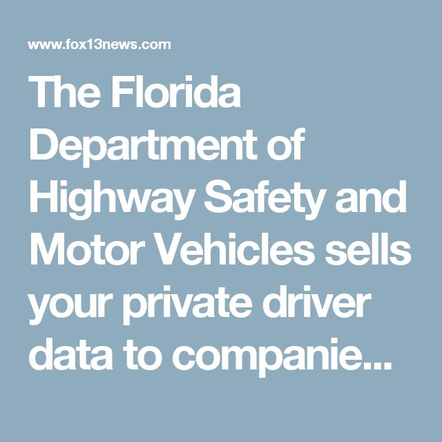 The florida department of highway safety and motor for Fl department of highway safety and motor vehicles