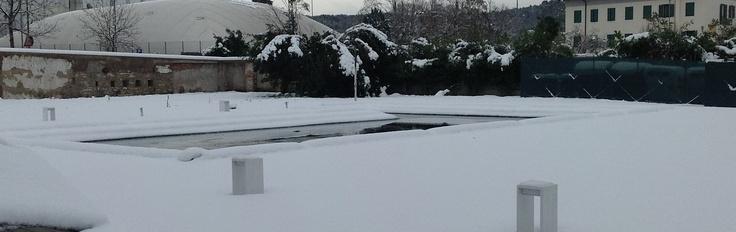 Invece che il tuffo in piscina, oggi tuffo nella neve fresca!