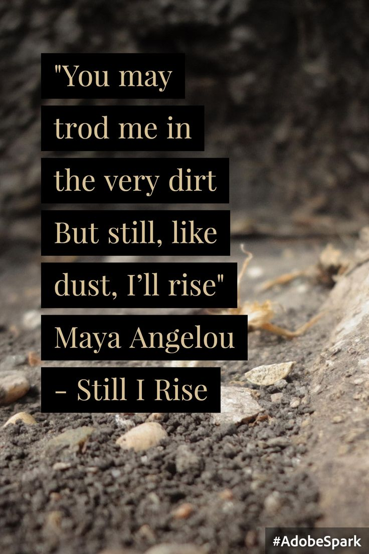 still i rise essay ideas about still i rise poem still i rise un essay writing competition