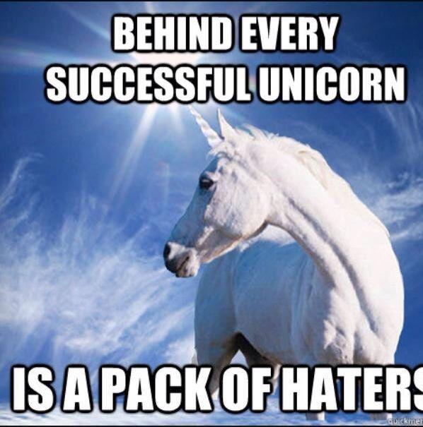 Best 25+ Unicorn Memes Ideas On Pinterest