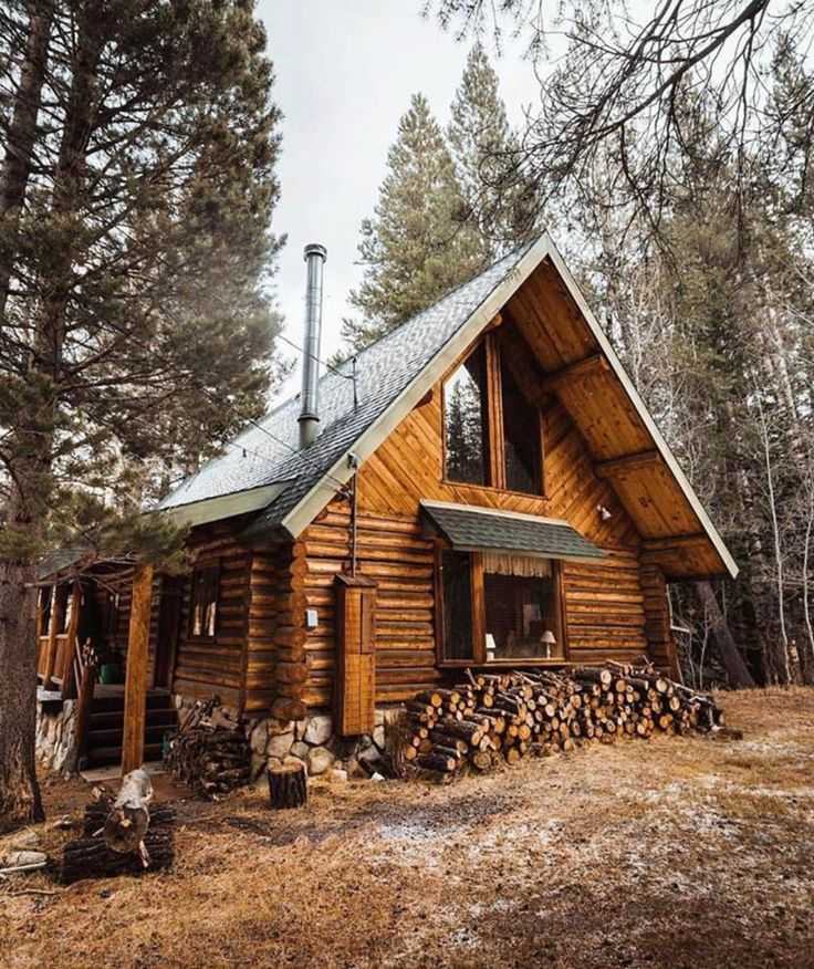 Survival smarts photo cabin in the woods pinterest for Small survival cabin