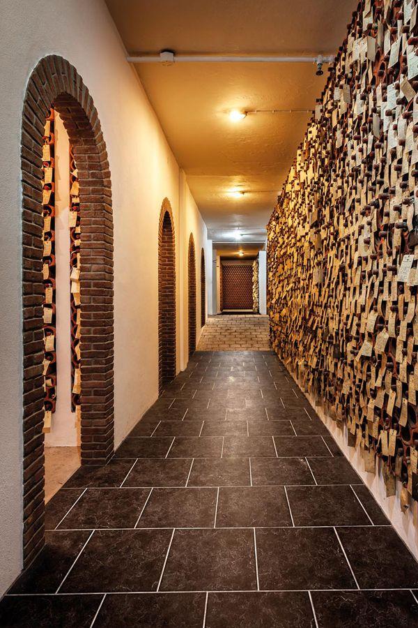 Com 300 viticultores associadose 2 mil hectares de vinha, a Adega de Borba dedica-se à produção e promoção de vinho há mais de seis décadas.