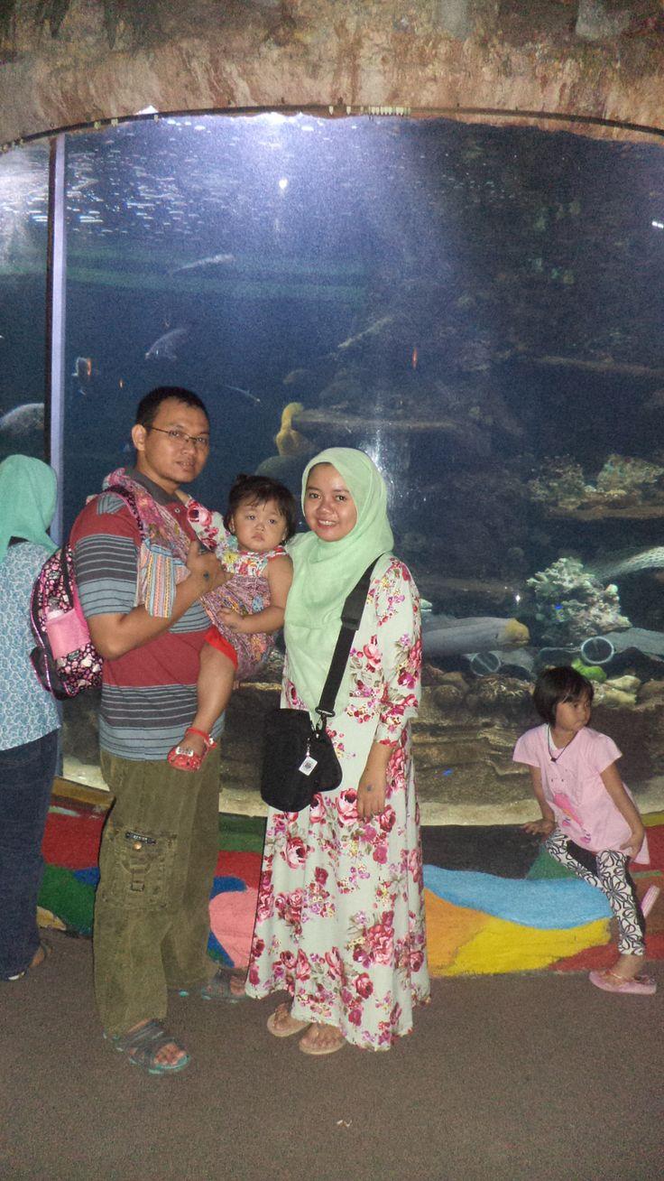 Sea World's Jakarta