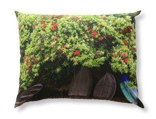 Cushion Cover-Pohutukawa Summer