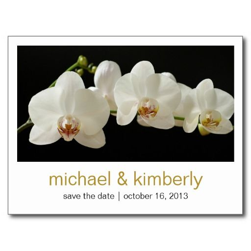 >>>Smart Deals for          Orchid | Save the Date Post Card           Orchid | Save the Date Post Card We provide you all shopping site and all informations in our go to store link. You will see low prices onDeals          Orchid | Save the Date Post Card lowest price Fast Shipping and sav...Cleck Hot Deals >>> http://www.zazzle.com/orchid_save_the_date_post_card-239354762448318812?rf=238627982471231924&zbar=1&tc=terrest