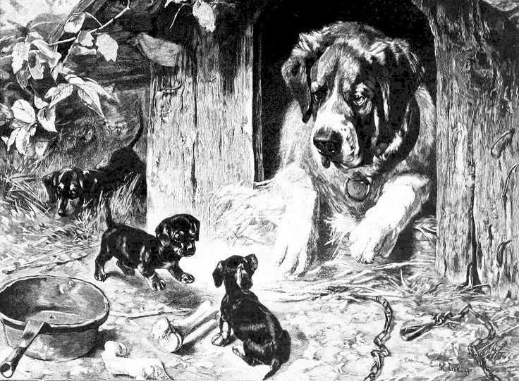 File:Die Gartenlaube (1892) b 309.jpg