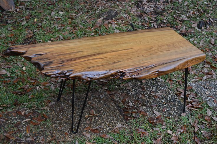 Special 4000 year old cypress coffee table log was for Cypress log home prices