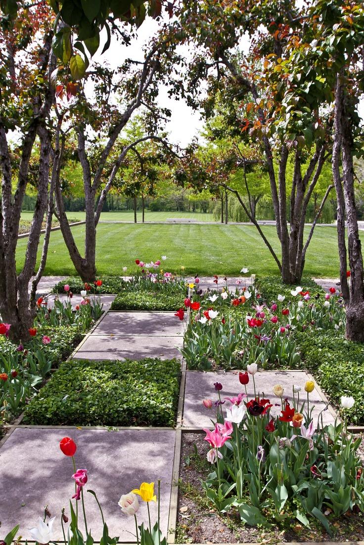 18 best images about checkerboard garden on pinterest for Checkerboard garden designs