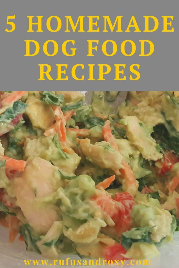 5 Homemade Dog Food Recipes To Try At Home Dog Food Recipes