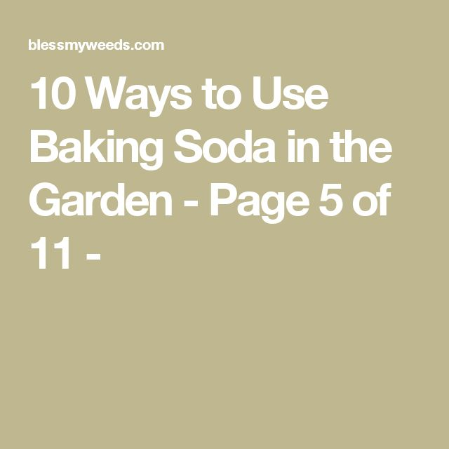 10 Ways to Use Baking Soda in the Garden - Page 5 of 11 -