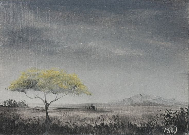 Buy Acacia in Yellow - ACEO Miniature, Oil painting by Pip Walters on Artfinder. Discover thousands of other original paintings, prints, sculptures and photography from independent artists.