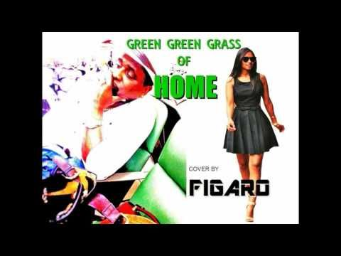 Green Green Grass Of Home ~ Figaro 2016