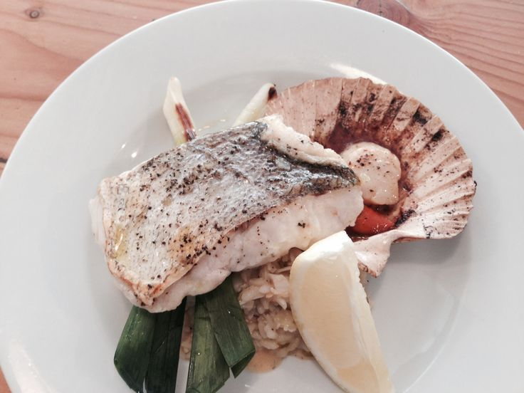 Nasello con risotto Hake fillet served with a crab risotto, baby leeks and a half shell scallop.