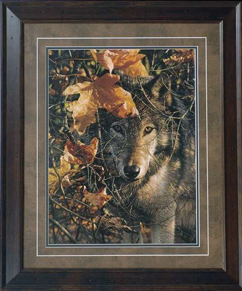 North American Fine Framed Wholesale Art Print Autumn Eyes