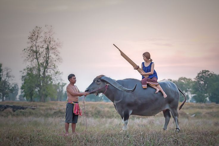 women, lyre, buffalo by Visoot Uthairam on 500px