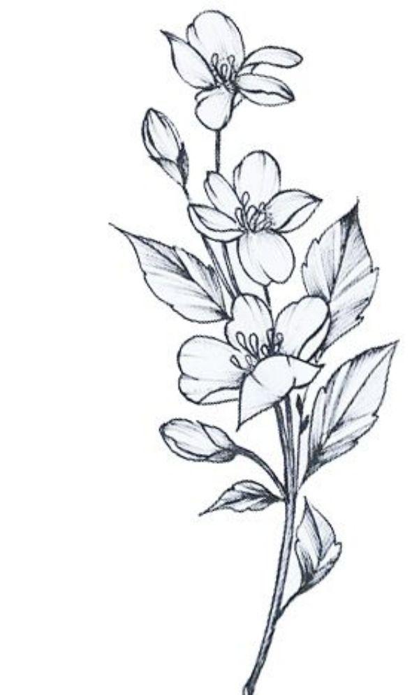 Flower Bouquet Drawing Tattoo Easy Flower Drawings Flower Drawing Design Flower Drawing