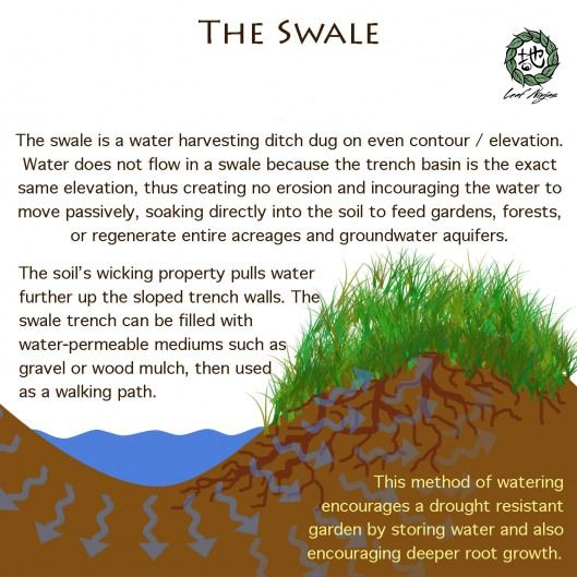 Permaculture swale - I have successfully used these in my garden in arid Northern Nevada, especially around trees.