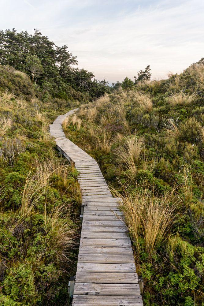 """Der Weg durch das Whakapapa Village im Tongariro National Park, Neuseeland. Funfact: """"WH"""" wird von den Maori wie ein """"F"""" ausgesprochen, also """"Fakapapa Village""""."""