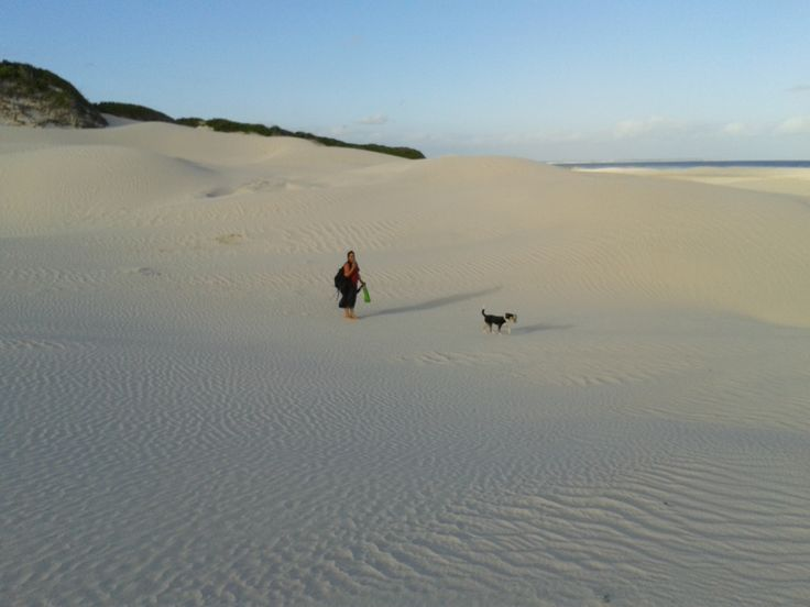 Driftwood mission on one of the many 'not so crowded beaches' , @dePunt