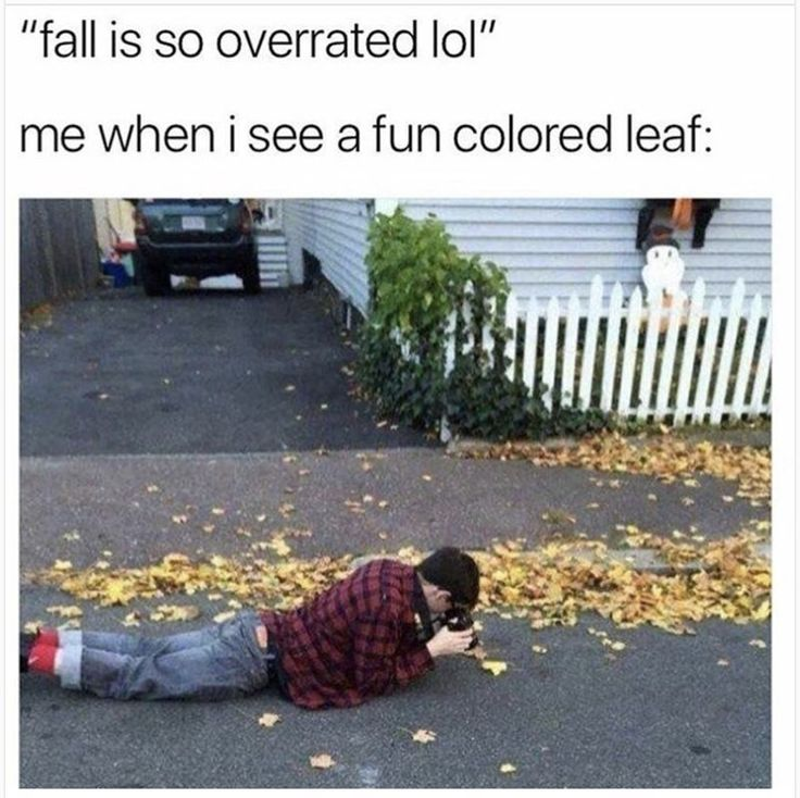 70 Today's Most Funny Memes #131