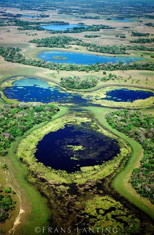 Frans Lanting - Lagoons during dry season (aerial), Pantanal, Brazil
