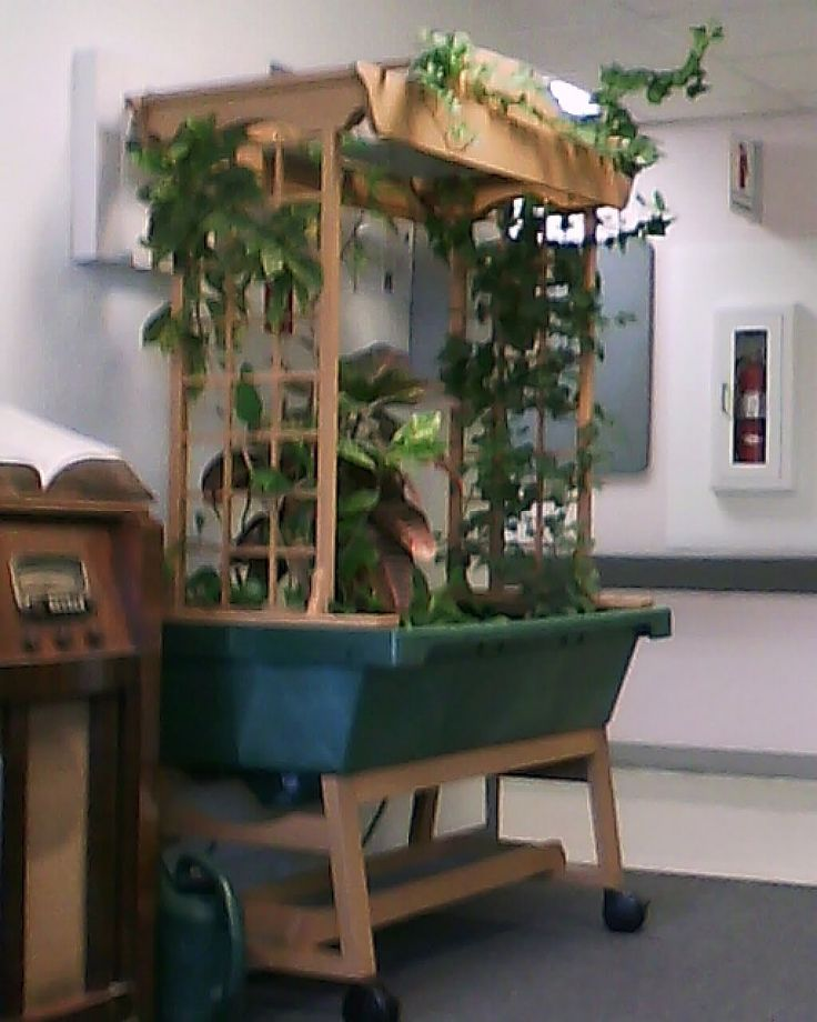 Maybe with a galvanized tub and grow lights on chains? tomtoes on one side & 59 best Grow lights images on Pinterest | Plants Fish and Garden ... azcodes.com