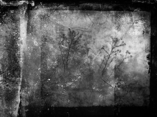 CHRIS FRIEL www.cfriel.com/neptune