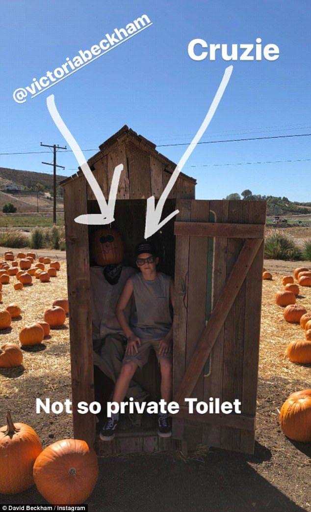 Best 25 Outdoor Toilet Ideas On Pinterest Outdoor