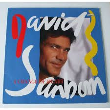 A Change Of Heart - David Sanborn, LP (Pre-Owned)