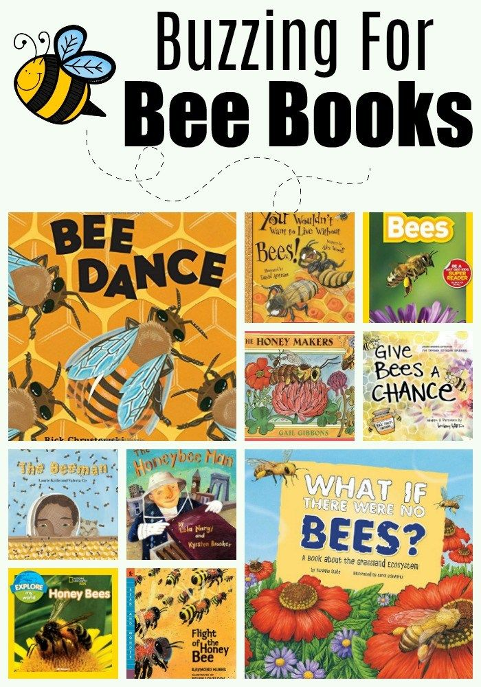 Bee Resources For The Primary Classroom The Teacher Bag Formally