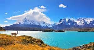patagônia chilena - Bing images