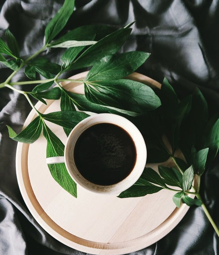 Feeling lethargic? Grab a cup of black coffee! It is a healthier option as it has minimal calories without the added milk or sugar!  #honeyspree #fitspo #weightloss #instafitness #fitfam #healthieroption #breakfast #healthyfood #healthy #fitness #fitnesstips #fitfood #fitnessfood #eathealthy #eatclean #organic #sugarfree #natural #organic  #savethebees #honey #bees #DIY #newzealand #manuka #manukahoney #beauty #health #photooftheday #instadaily #healthyliving