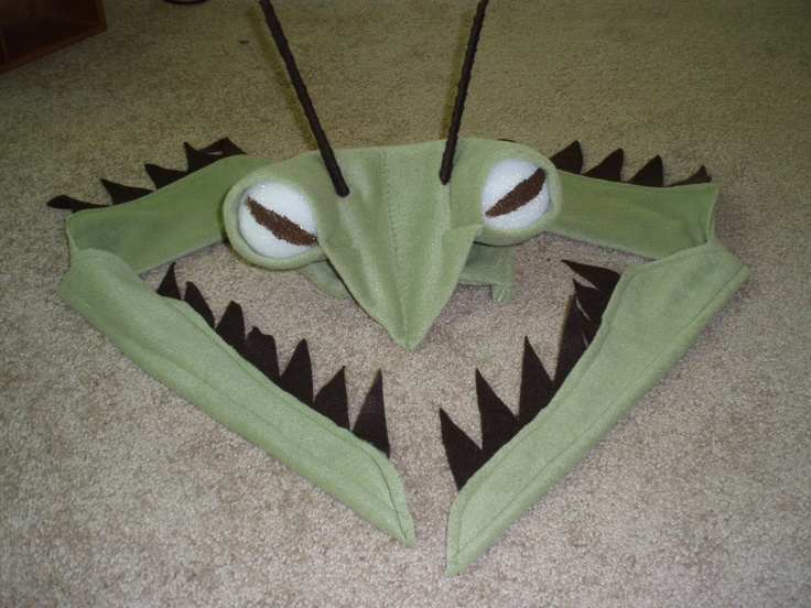 Praying Mantis Costume | costume ideas | Pinterest ...